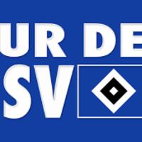 2. BUNDESLIGA LIVE! Bielefeld - HAMBURGER SPORTVEREIN